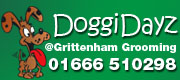 DoggiDayz at Grittenham Grooming advert